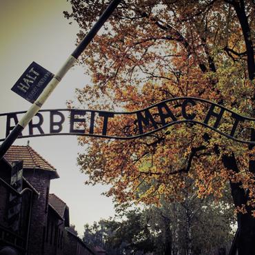 Auschwitz</br>- Birkenau
