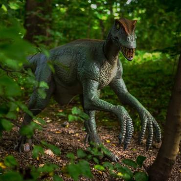 Dinozatorland </br>+  Miniature Park